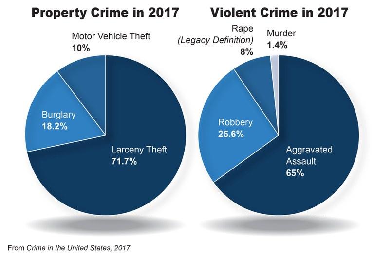 crime in united states