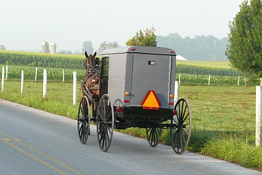 File photo of an Amish buggy in Michigan. (Ad Meskens/Wikimedia Commons [CC BY-SA 3.0 (creativecommons.org/licenses/by-sa/3.0)])