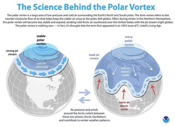 graphic of polar vortex