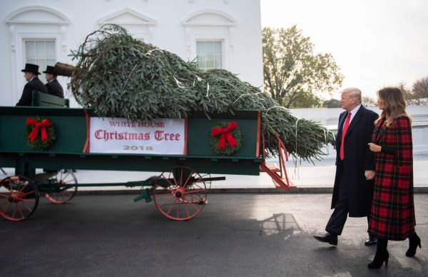 Trump and Melania at White House Christmas tree arrival.