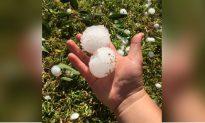 3-Inch Hailstones Hit Australia's Sydney in 'White Christmas' Catastrophe