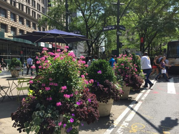 Flowers in Greeley Square