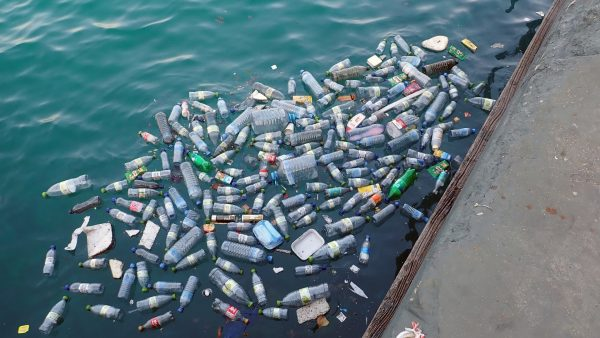 plastic bottles and cans are in the water