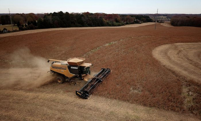 Farmer Lucas Richard of LFR Grain harvests a crop of soybeans at a farm in Hickory, North Carolina, on Nov. 29, 2018. (Charles Mostoller/Reuters)