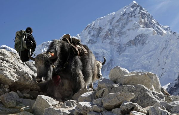 people passes trekkers up the mountain