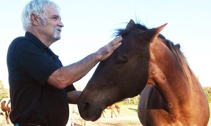 Mike Kennedy, a Vietnam war veteran, has been a volunteer with Flurry's Hope Blind Horse Rescue, Madison, for five years. (Facebook | Flurrys Hope)