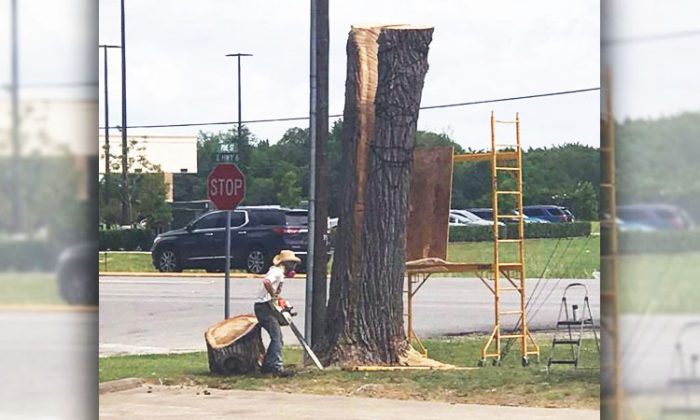 Artist James Philip finds a creative solution to save 100-year-old tree in Alvin, Texas, from being cut. (Facebook | Joe's Barbeque)