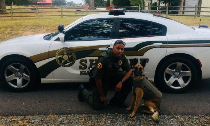 Faulkner County Sheriff's Office Deputy Keenan Wallace, seen in a file photo, was fired after shooting a Chihuahua. (Faulkner County Sheriff's Office)