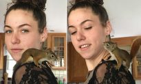 Grateful Squirrel Returns to Say 'Thank You' to Woman Who Saved Him