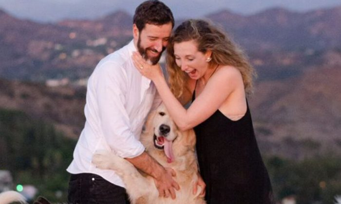 Maurice Goldstein after proposing to Laura Stampler with the help of 16 furry friends. (Rebecca Yale Photography)