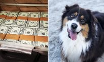 Video of Man Offering Homeless Person $50,000 for His Dog Teaches Us About Friendship