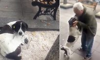 Georgia Man Lost His Dog 3 Years Ago, Now Watch Their Amazing Reunion Video
