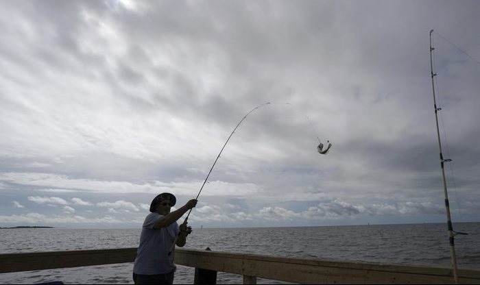 Tim Hitchens, of Gulfprort, Miss., pulls in a fish while fishing from a pier in the Gulf of Mexico, the morning after Tropical Storm Gordon made landfall nearby, in Biloxi, Miss. The rules that govern recreational marine fishing in the U.S. will get an overhaul due to a new law passed by in December. (AP Photo/Gerald Herbert)