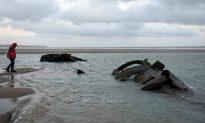 Rare German World War I Submarine Resurfaces on French Beach