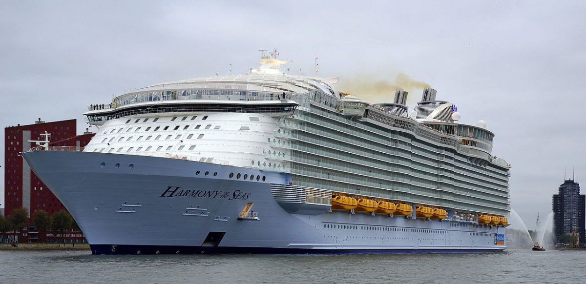 Woman Who Stood on Ship's Railing for Selfie Is Booted Off Cruise: Reports