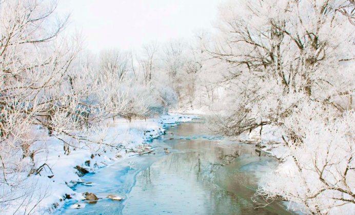 A winter landscape, still as it may look, is host to many different sounds.  (Heidi Brand/SHUTTERSTOCK)