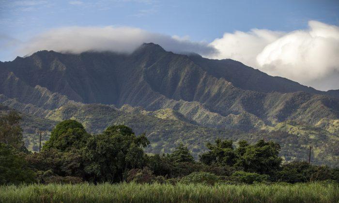 A stock Hawaii photo (Courtesy of KoHana Distillers)
