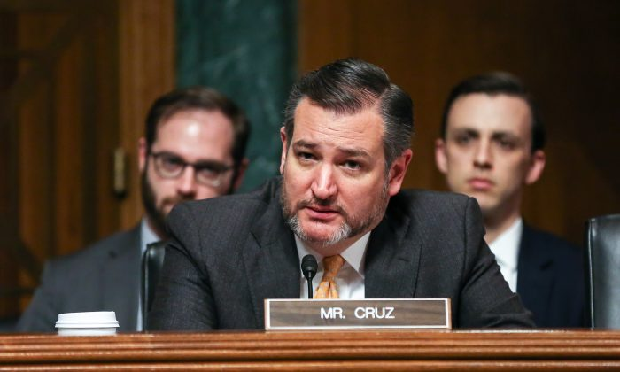 Sen. Ted Cruz (R-Texas) at a Senate Judiciary Committee hearing in Washington on Dec. 12, 2018. (Jennifer Zeng/The Epoch Times)