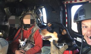 California Couple and Dogs Rescued After Two-Week Mountain Ordeal