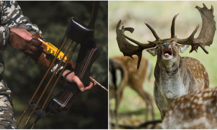 Hunter, Emilio de la Cruz trains with his bow in the outskirts of San Agustin de Guadalix near Madrid on Dec. 12, 2016; A fallow deer roars during the rutting season in the zoological garden in Hannover, northern Germany on Oct. 2, 2018. (Pierre-Philippe Marcou/AFP/Getty Images; Julian Stratenschulte/AFP/Getty Images)