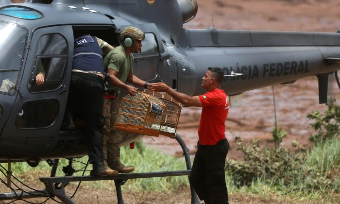 A firefighter carries rescued cages after a tailings dam from Brazilian miner Vale SA burst in Brumadinho, Brazil, on Jan. 27, 2019. (Adriano Machado/Reuters)