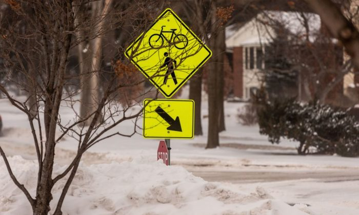 A neighborhood in Minneapolis, Minn., on Jan. 29, 2019. (Kerem/Yucel/AFP/Getty Images)