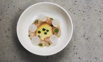 A Chef's Journey: Taking Oxalis From Pop-Up to Brick and Mortar