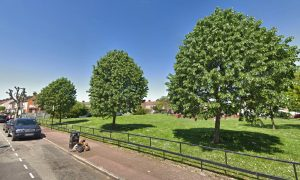Newborn Baby Found Abandoned in Park in Near Freezing Temperatures