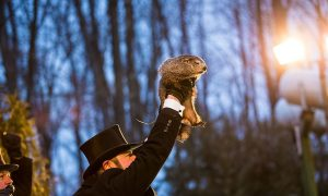Early Spring Predicted: America's Famous Groundhog Doesn't See His Shadow