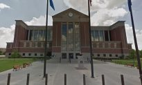 Courthouse Shuts Down Due to Bedbugs Falling out of Lawyer's Clothes: Reports