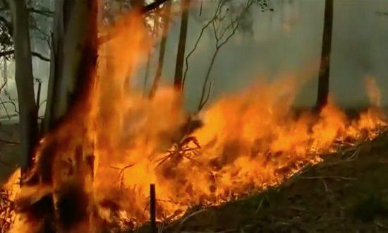 Fire Edges Closer to Rugged Tasmanian Ranges