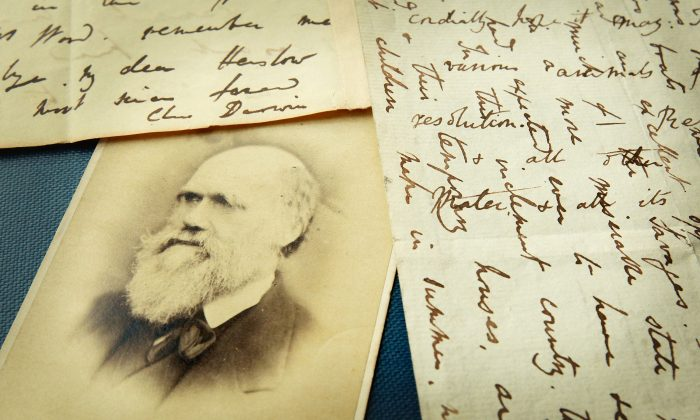 Original letters from Charles Darwin are displayed at the Herbaruim library at the Royal Botanic Gardens in London, UK, on March 25, 2009. (Peter Macdiarmid/Getty Images)