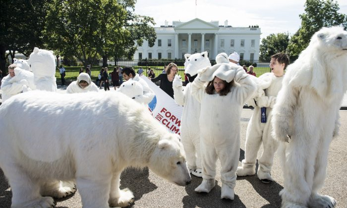 Activists remove polar bear costumes on Pennsylvania Avenue in front of the White House after a protest in Washington, D.C. on Sept. 26, 2013. The polar bear has become a symbol of concerns about global warming. (Brendan Smialowski/AFP/Getty Images)