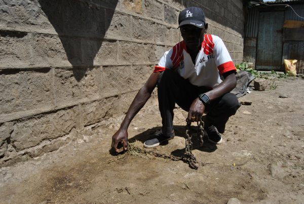 man shows the chains to lock donkeys so they don't get stolen
