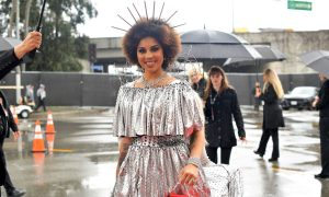 Singer Dresses as Border Wall Complete With Barb Wire at Grammys