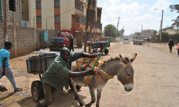 A water dealer helps his donkey pull the cart after filling water at a water point in Rongai, Kajiado county on Feb. 5, 2019. (Dominic Kirui/Special to The Epoch Times)