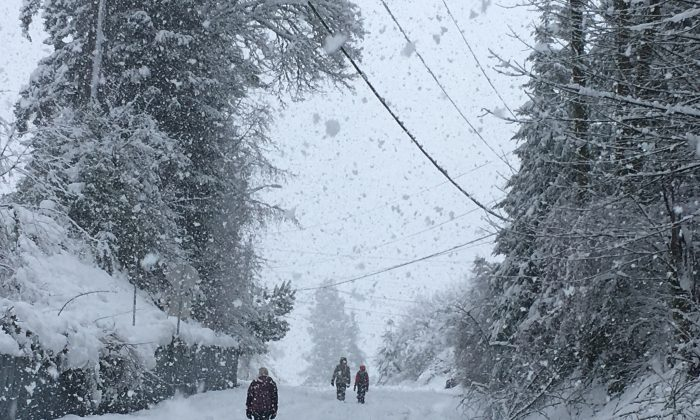 People walk up a closed road as snow continued to fall in Olympia, Wash., on Feb. 11, 2019. (Rachel La Corte/AP Photo)