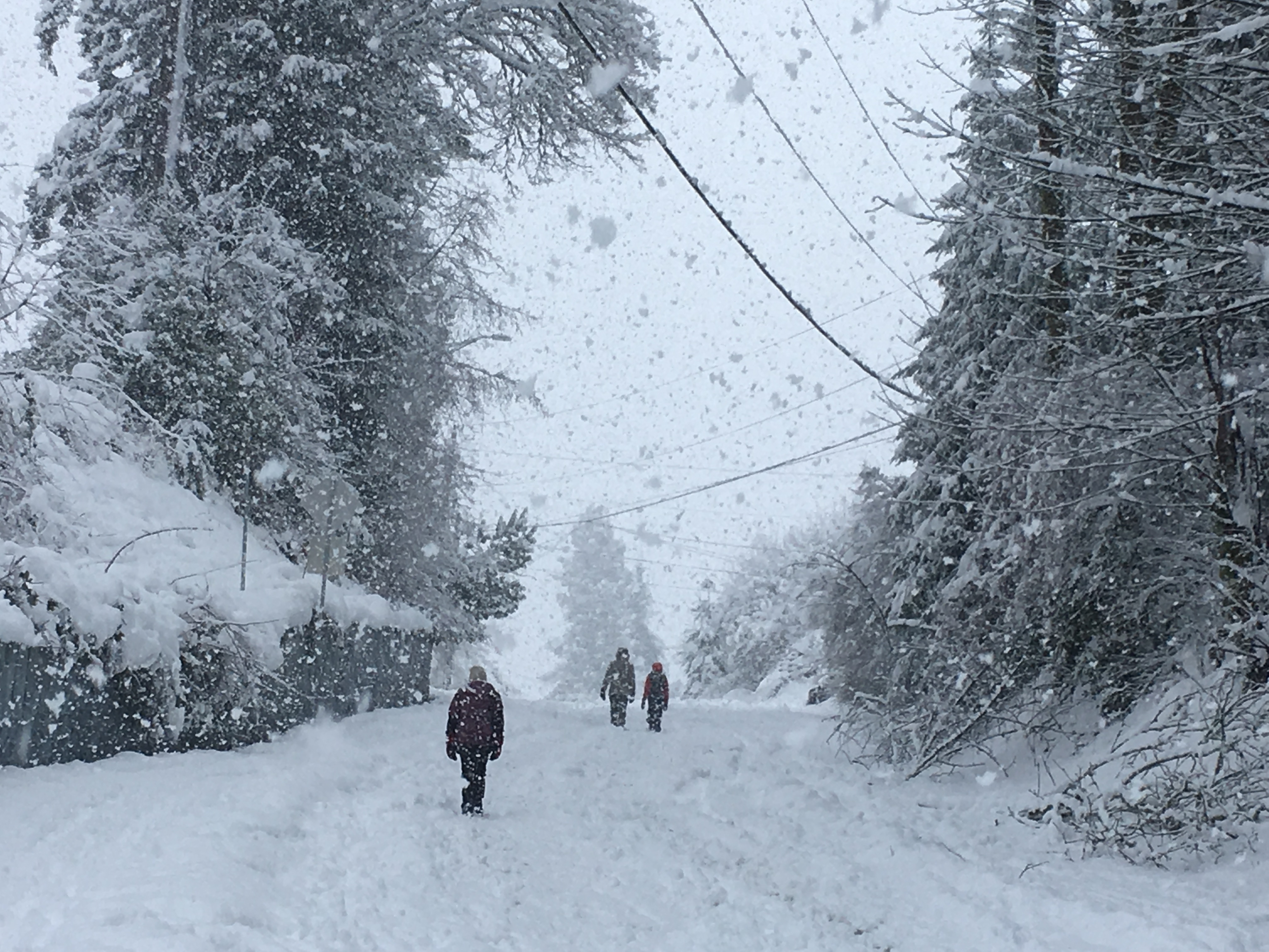 People walk up a closed off road as snow continued to fall