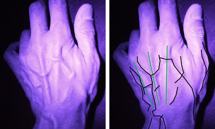A hand image showing ways marks can be used to identify criminals, in a photo illustration. (Lancaster University)