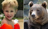 3-Year-Old Boy Lost in Freezing Cold Found Alive, Claims 'Bear Was with Him'