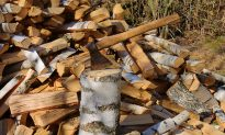 Dad and Twin Sons Cut 80 Truckfuls of Firewood to Warm Up Cold Homes for Needy Families