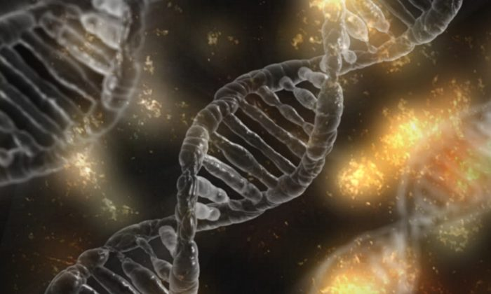 DNA double helix. (typographyimages/Pixabay)