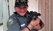 Tiny Puppy Rescued from a Freezing-Cold River Promptly Adopted by Police Officer
