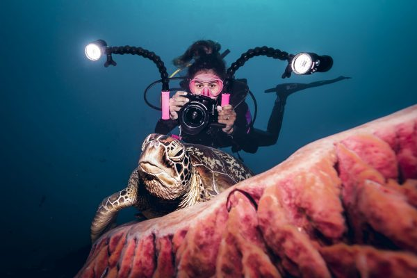 Gauthier filming a turtle