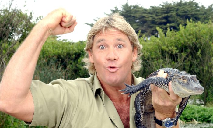 Steve Irwin, poses with a three foot long alligator at the San Francisco Zoo in San Francisco, Calif., on June 26, 2002. (Justin Sullivan/Getty Images)