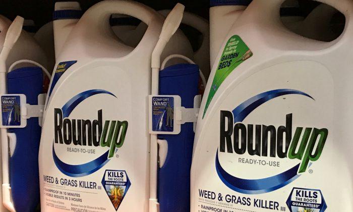 Monsanto Co's Roundup is shown for sale in Encinitas, California, June 26, 2017. (REUTERS /Mike Blake).