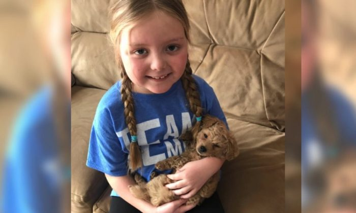 Emma Mertens, 7, has been diagnosed with an inoperable brain tumor, and her family friend's call for letters from dogs to lift the little girl's spirits has gone viral. (Facebook)