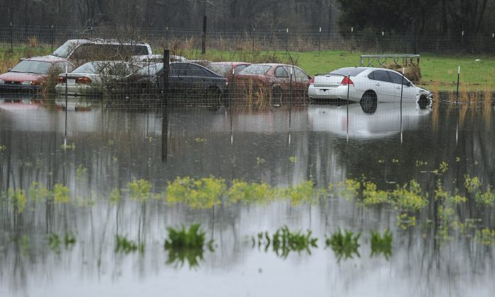 A backyard on Pryor Road in Limestone County is flooded in Decatur, Ala. More than 30 school districts in Alabama, Mississippi, and Tennessee closed Friday, in part because school buses couldn't navigate flooded roads, on Feb. 22, 2019. (Jeronimo Nisa/The Decatur Daily via AP)