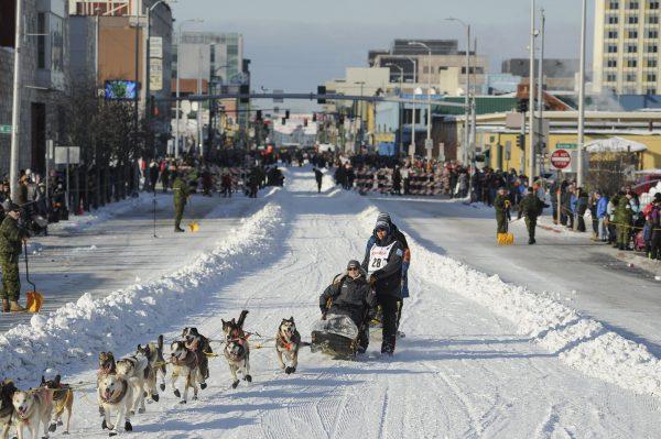 Alaska Dog Sled Race 14