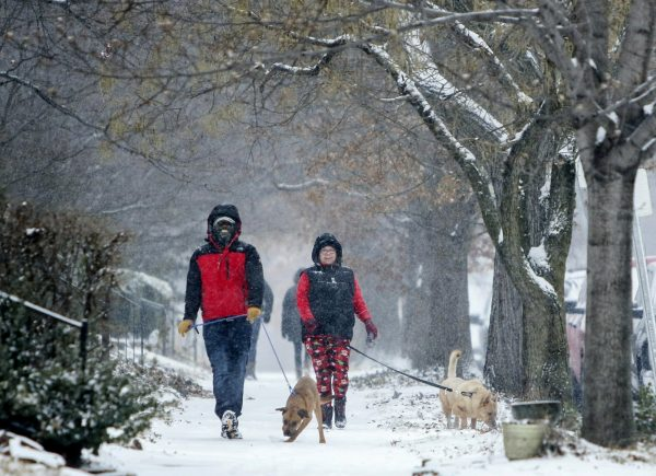 Kevin Britton, left, and his wife Amy Britton take their dogs for a walk